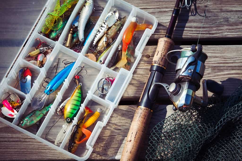 Fishing For Beginners And Pros